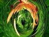 dragonflower1-orb-copy