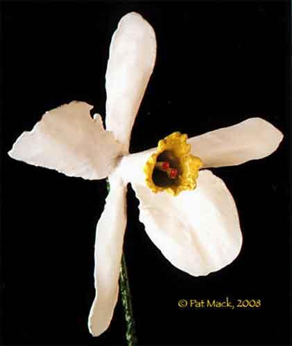 Flower steel